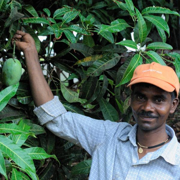 Organic-Farming01-1